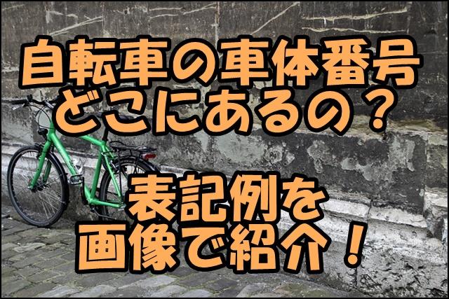 自転車の車体番号はどこにある?表記例と数字の桁数を画像で確認!