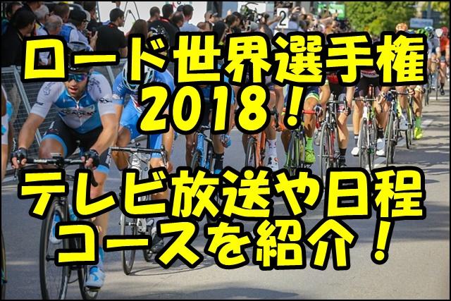 ロードレース世界選手権2018のテレビ放送は?出場選手やコースを紹介!